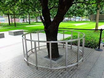 9/11 Memorial a New York - L'albero sopravvissuto