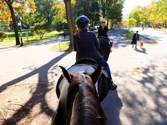 Central Park a New York - Andare a cavallo