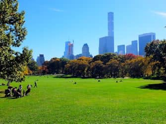 Central Park a New York - Sheep Meadow