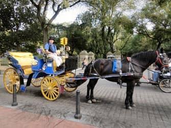 Giro in carrozza Central Park