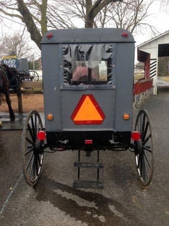Amischen Buggy-Gita da New York