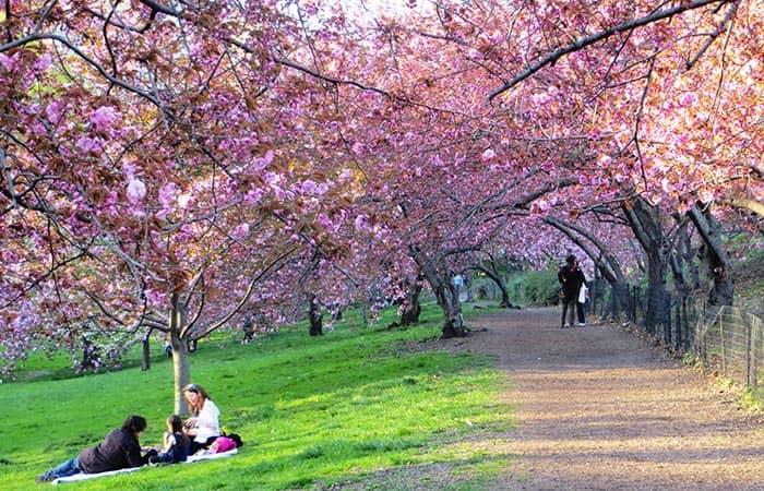 Il tempo a New York - Primavera