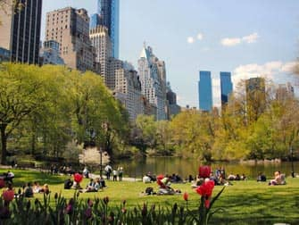 Parchi a New York- Central Park