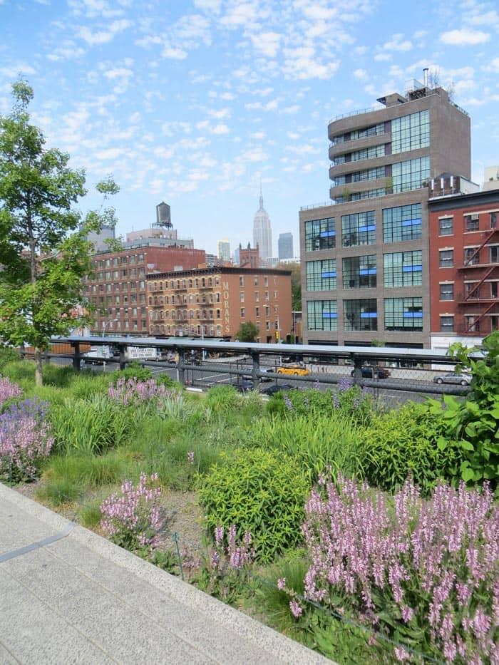 Parchi a New York- High Line Park