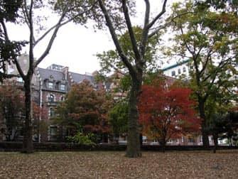 Parchi a New York - Riverside Drive dal Riverside Park