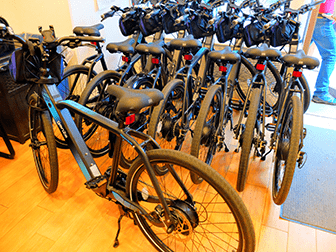 Strutture per persone disabili a New York - Bicicletta elettrica