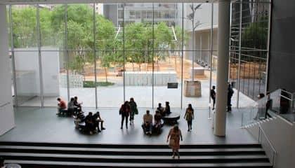 MoMA Museum of Modern Art - Giardino
