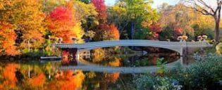 Tour alla scoperta delle scene dei film in Central Park