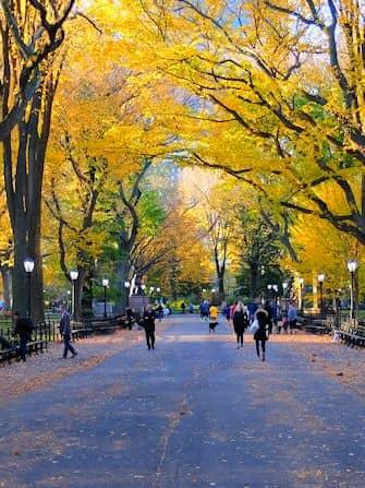 Tour alla scoperta delle scene dei film in Central Park - The Mall