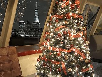 Crociere con cena alla Vigilia di Natale a New York - Albero di Natale