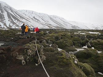 Fermata in Islanda- Formazioni dalla lava