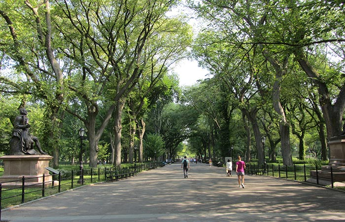 Festa della Mamma a New York - The Mall in Central Park