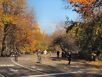 Noleggio di biciclette a New York - Autunno in Central Park