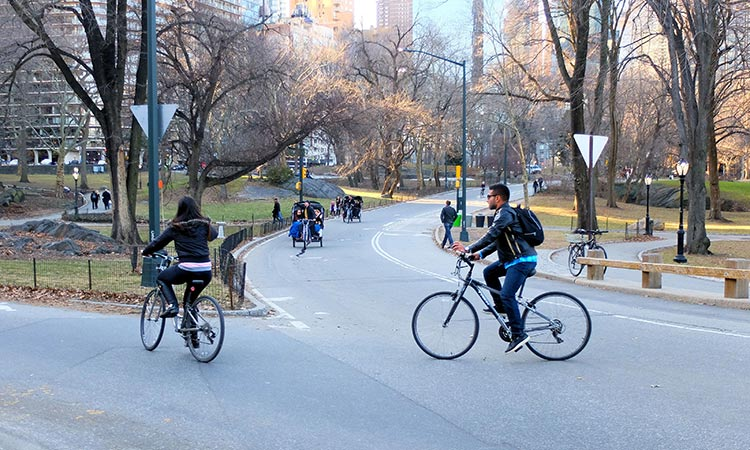 Andare in bici a New York