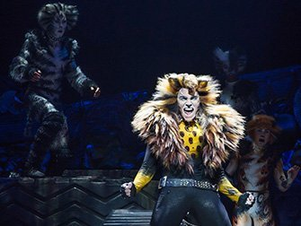 Cats a Broadway - Solo