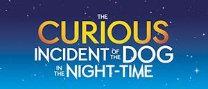 The Curious Incident of the Dog in the Night Time a Broadway
