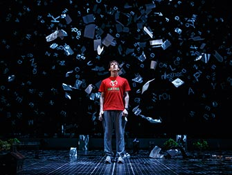 The Curious Incident of the Dog in the Night-Time a Broadway - Spettacolo a New York