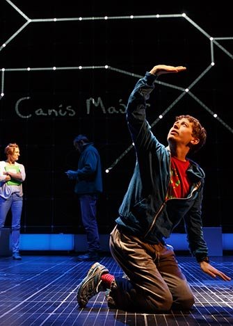 The Curious Incident of the Dog in the Night-Time a Broadway - Spettacolo