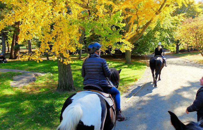 Andare a cavallo in Central Park - Giro