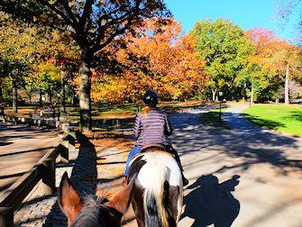 Andare a cavallo in Central Park - Ippovia