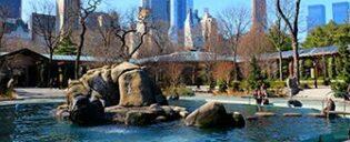 Biglietti Central Park Zoo