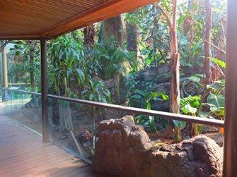Biglietti Central Park Zoo - Foresta pluviale