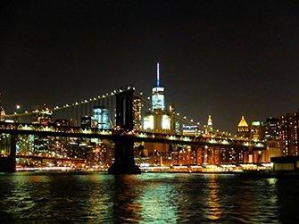 Crociera con cena sul fiume Hudson a New York - Veduta skyline
