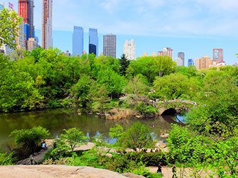 La differenza tra il New York Sightseeing Flex Pass e il New York Explorer Pass - Central Park